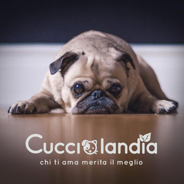 e-commerce cucciolandia pet